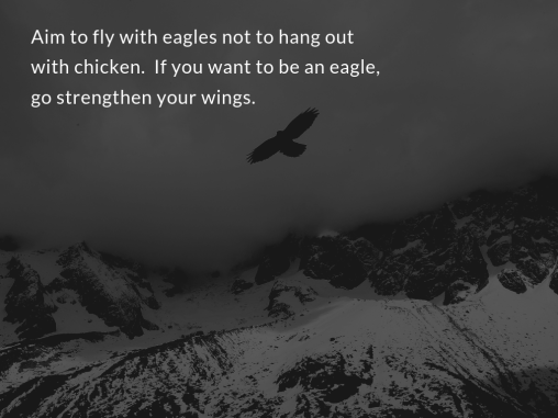 fly with eagles